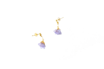 スターチス-薄紫