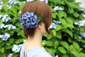 紫陽花まりこs